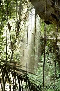 Mondulkiri - Waterfalls dans la jungle