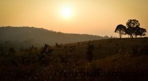 Khao Yai National Park - Lueurs de fin de journée