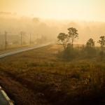 Khao Yai National Park - Lueurs matinales