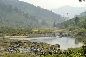 Hauts plateaux du centre - Jungle et cours d'eau