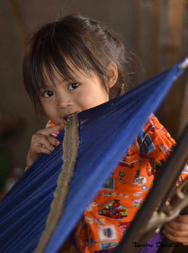 La malice – Région de Memot – Cambodge