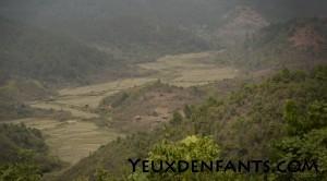 Entre Phônsavan et Phoukhoun - Rizières asséchées