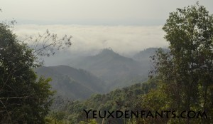 Région de Nam Chat - La tête dans les nuages