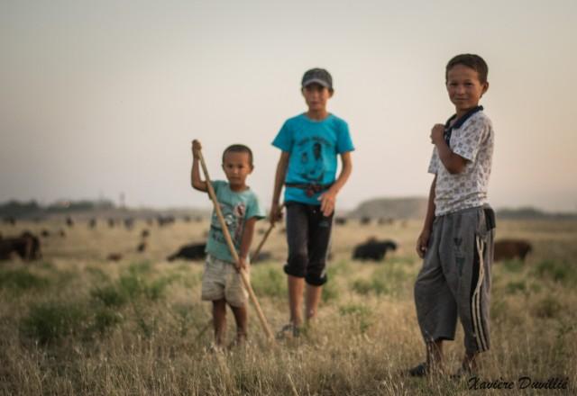Bergers en herbe- Région de Shahrisabz- Ouzbékistan