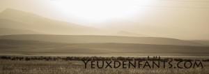 Sur la route, entre Samarcande et Boysun - Paysage à la lumière d'or